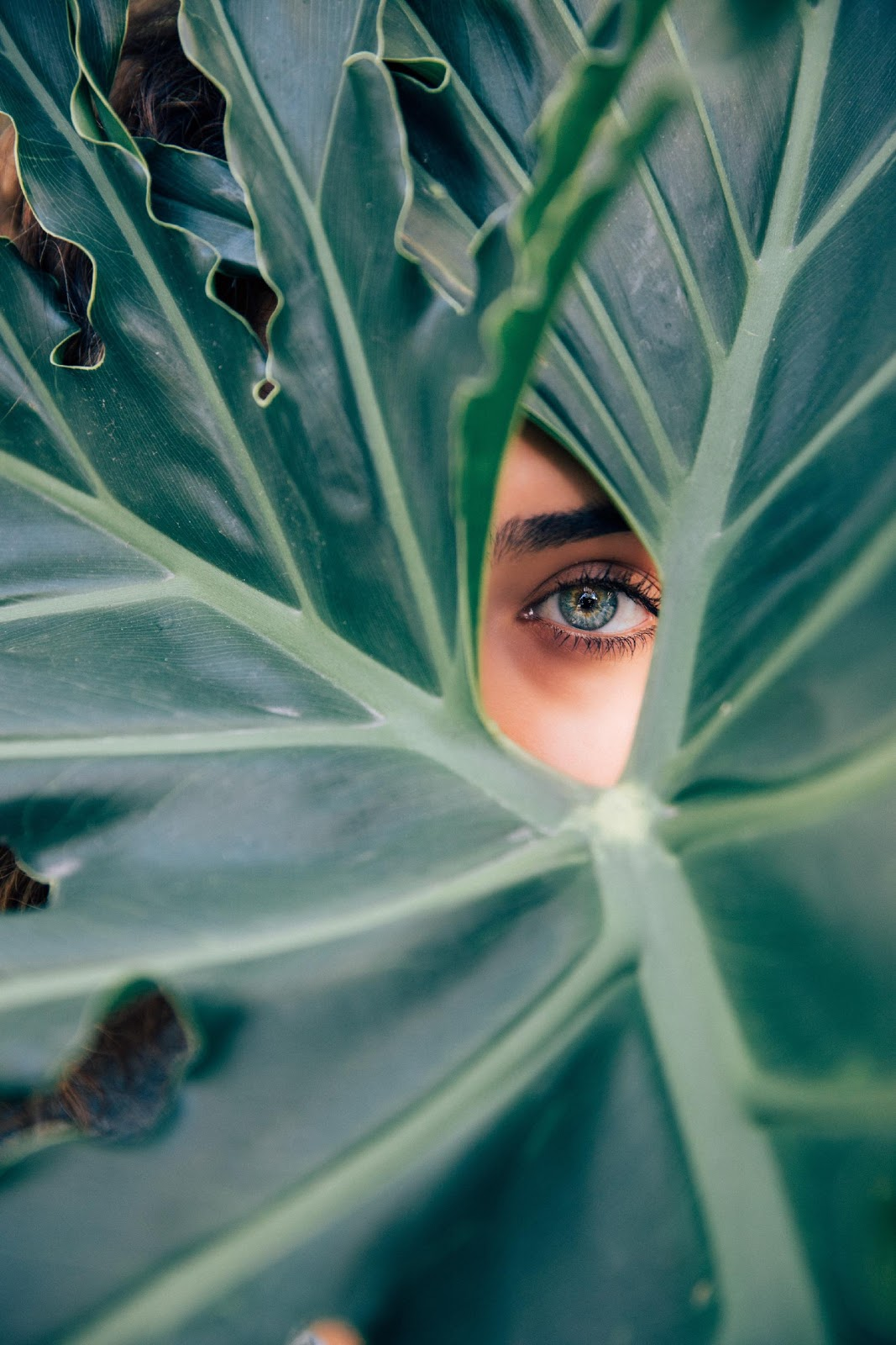 Lessons from Women of the Old Testament 1: Eve's Wandering Eyes