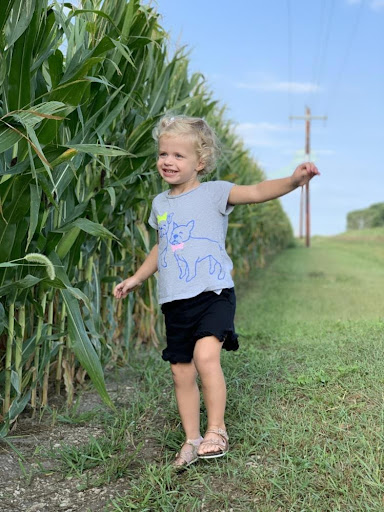 Read more about the article Life on the Farm 3: Growing Season